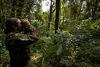 Ornithologist Edwin Scholes watching birds in the rain forest of the Arfak Mountains, New Guinea.
