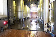 Modern stainless steel fermentation tanks in the newest part of the winery. Just cleaned with water. Bodega Pisano Winery, Progreso, Uruguay, South America