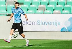 Milivoje Novakovic during practice session of Slovenian National Football Team before Euro 2016 Qualifications match against England, on June 12, 2015 in SRC Stozice, Ljubljana, Slovenia. Photo by Vid Ponikvar / Sportida