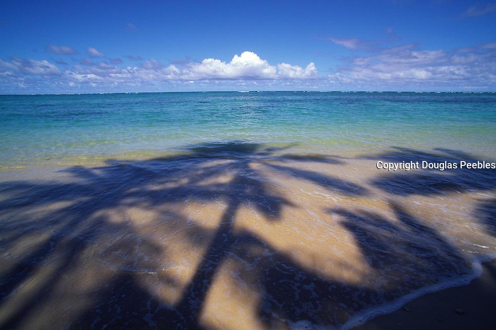 Beach with palm shadow<br />