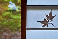 Japon, île de Honshu, région de Kansaï, Kyoto, temple Daigoji, Jardin Sanboin  // Japan, Honshu island, Kansai region, Kyoto, Daigoji temple, Sanboin garden