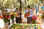 A mariachi band plays at a gravesite at the San Miguel cemetery during the Day of the Dead Festival known in Spanish as Día de Muertos in Oaxaca, Mexico.