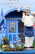 The entrance to Wild Blueberry Land, a roadside attraction in Columbia Falls, Maine.