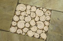 Decorative stone ammonites set into paving on the patio