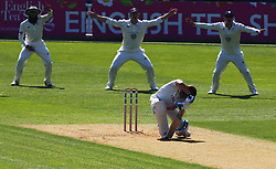 April 20, 2018 - London, Greater London, United Kingdom - Fidel Edwards of Hampshire ccc  celebrates LBW on Surrey's Scott Bothwick.during Specsavers County Championship - Division One, day one match between Surrey CCC and Hampshire CCC at Kia Oval, London, England on 20 April 2018. (Credit Image: © Kieran Galvin/NurPhoto via ZUMA Press)