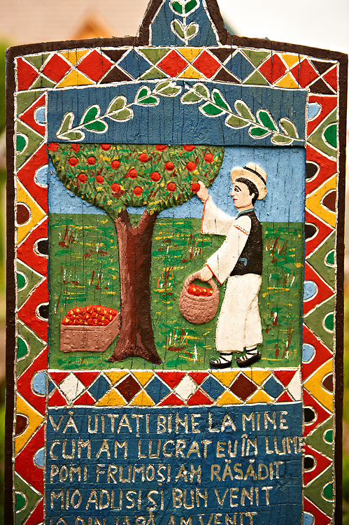 Tombstone of a farmer picking fruit,  The  Merry Cemetery ( Cimitirul Vesel ),  Săpânţa, Maramares, Northern Transylvania, Romania.  The naive folk art style of the tombstones created by woodcarver  Stan Ioan Pătraş (1909 - 1977) who created in his lifetime over 700 colourfully painted wooden tombstones with small relief portrait carvings of the deceased or with scenes depicting them at work or play or surprisingly showing the violent accident that killed them. Each tombstone has an inscription about the person, sometimes a light hearted  limerick in Romanian. .<br /> <br /> Visit our ROMANIA HISTORIC PLACXES PHOTO COLLECTIONS for more photos to download or buy as wall art prints https://funkystock.photoshelter.com/gallery-collection/Pictures-Images-of-Romania-Photos-of-Romanian-Historic-Landmark-Sites/C00001TITiQwAdS8