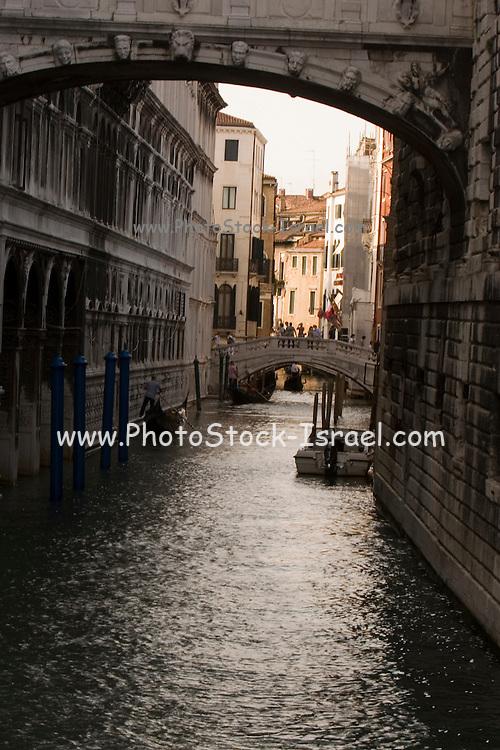 Italy, Venice Gondolas in the canal