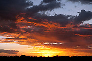 Sunset over Serengeti, Tanzania<br /> scenery<br /> national park<br /> clouds