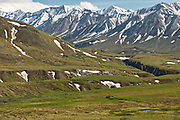 View of the Alaska Range and the McKinley River from the Eielson Visitors Center in Denali National Park Alaska. Denali National Park and Preserve encompasses 6 million acres of Alaska's interior wilderness.Denali National Park and Preserve encompasses 6 million acres of Alaska's interior wilderness.
