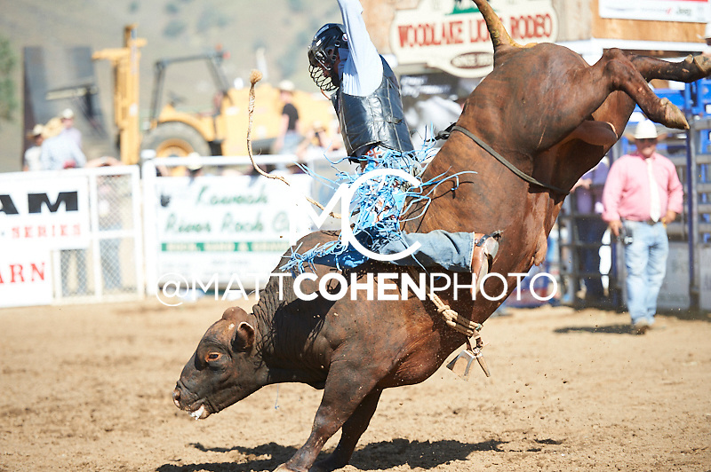 Bareback rider Ty Yates of Bakersfiled, CA rides C06 at the Woodlake Lions Rodeo.<br /> <br /> <br /> UNEDITED LOW-RES PREVIEW<br /> <br /> <br /> File shown may be an unedited low resolution version used as a proof only. All prints are 100% guaranteed for quality. Sizes 8x10+ come with a version for personal social media. I am currently not selling downloads for commercial/brand use.