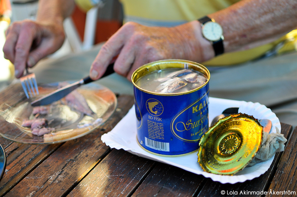 Opening a can of surströmming  (fermented herring)