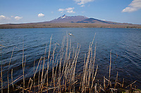 Lake Ohnuma, Hokkaido, is part of the Ohnuma Quasi National Park.  Ohnuma Besides Ohnuma, there are two other lakes, Konuma and Junsainuma with reflections of Mt Komagatake on the waters on a fine day.  Note that there are nine other mountains in Japan with the name Mt Komagatake.  This one is renowned for being a dormant volcano that awakens every few decades or so.  Ohnuma Lake is a popular picnic spot from Hakodate, with steam locomotive choo-choo train rides Hakodate-Ohnuma, cycling around the lake and variously shaped bridges connecting the tiny islets on the lake.