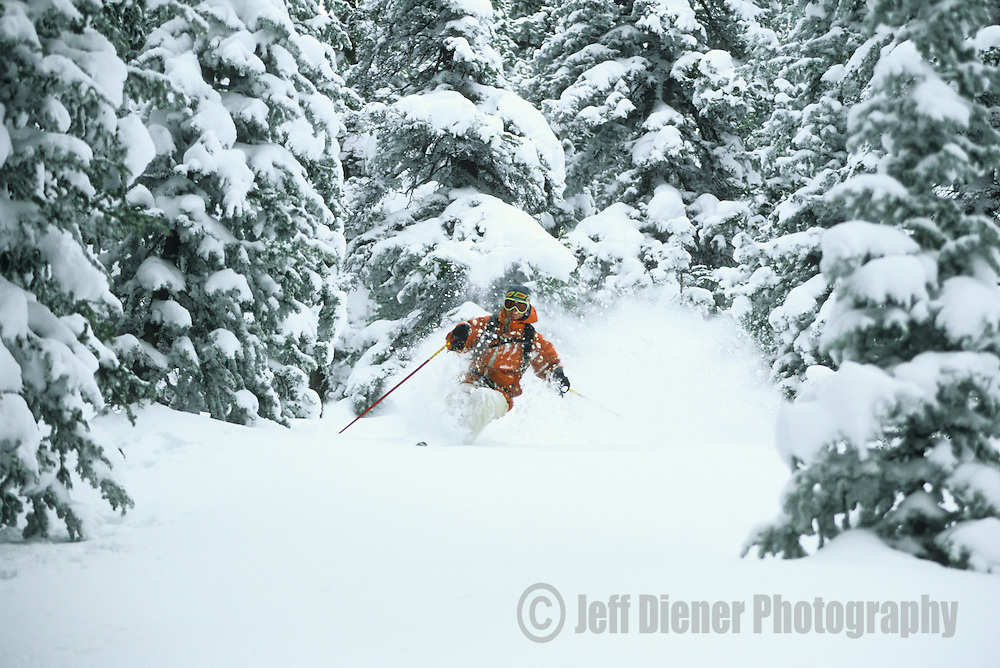 A skier makes turns in the deep powder of the Jackson Hole backcountry, Jackson Hole, Wyoming.
