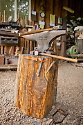 Anvil with  hammer on stump of wood
