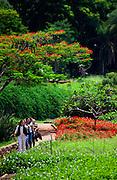 Belo Horizonte_MG, Brasil...Imagens do  Zoologico, Fundacao Zoo Botanica de Belo Horizonte, Criada em 1991, a Fundacao abriga o Jardim Zoologico e o Jardim Botanico da cidade de Belo Horizonte, Minas Gerais...Belo Horizonte Zoobotanic Foundation, Built in 1991, the Foundation hosts the Zoo and Botanical Garden in the city of Belo Horizonte, Minas Gerais. ..Foto: JOAO MARCOS ROSA / NITRO