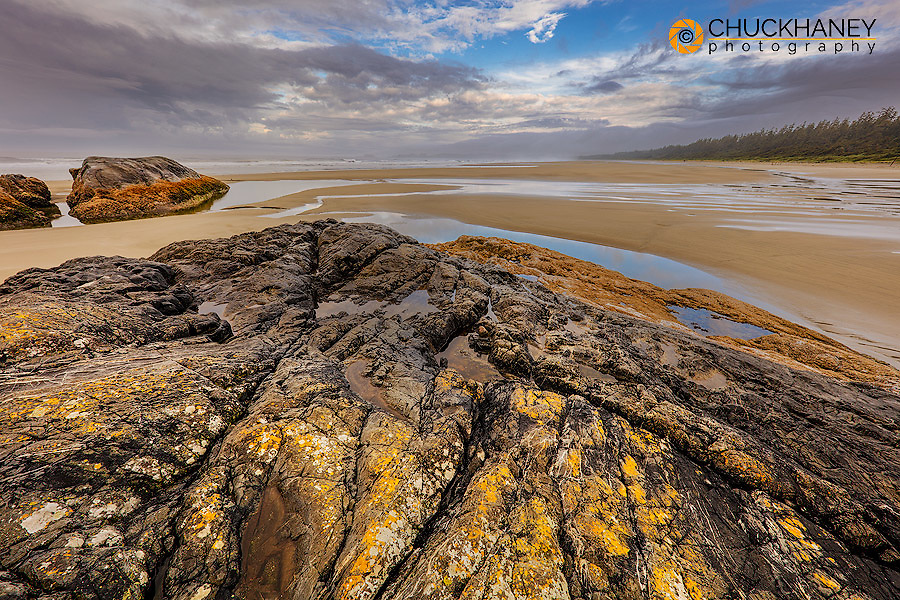 Tide pools along the Pacific Ocean coastline in Pacific Rim National Park Reserve near Tofino, British Columbia, Canada