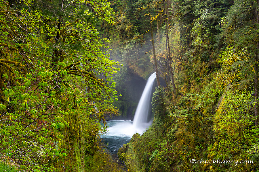 Metlako Falls in Eagle Creek in the Columbia Gorge National Scenic Area, Oregon, USA