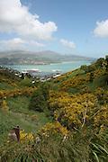 Lyttelton, New Zealand. Harbour as seen from mount Pleasant
