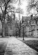 Early Morning at Yale