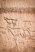 Petrographs depicting a herd of Llamas. Created approximately 8, 000 years BC. Quebrada Kezala Canyon, Atacama Desert, Chile, South America