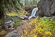 Autumn Color at Moose Falls, Yellowstone National Park