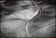 aerial of Carneros District, Napa Valley, California