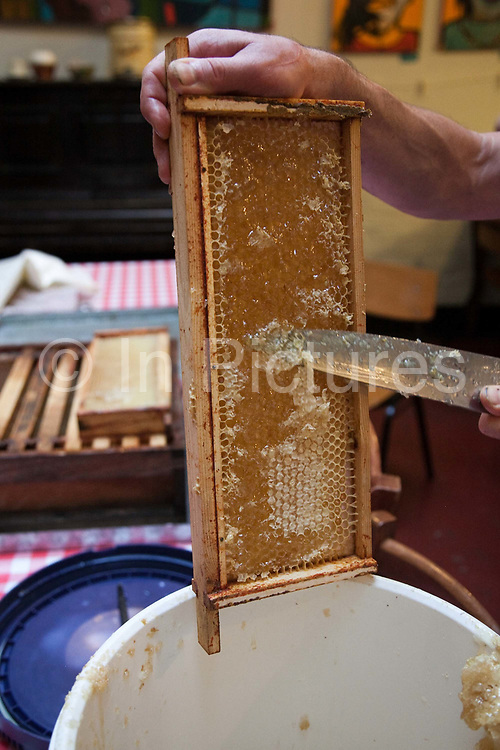 Beekeeper Ian Bailey cuts open honeycombs on a bee hive frame.  His honey is made by bees kept at Hackney City farm in East London over the summer. Keeping bees is a growing hobby in London and the hives and apiaries can be found in back gardens and roof tops across the capital.