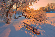 Hoarfrost at sunrise with bench by the pond.  Southdale neighbourhood. <br />Winnipeg<br />Manitoba<br />Canada