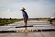 A woman working on salt marsh, Nam Dinh province, Vietnam, Asia.