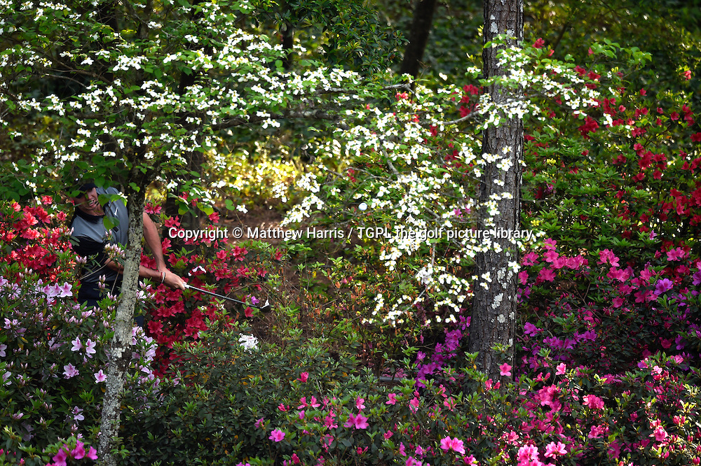 Rory MCILROY (NIR) plays his 3rd shot from the azaleas at 13th par 5 having watched his 2nd shot bounce off a sprinkler head during second round US Masters 2014,Augusta National,Augusta, Georgia,USA.