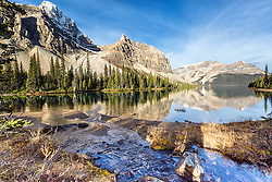 A mountain stream flows into Bow Lake on a calm morning while Crowfoot Mountain reflects upon its waters.