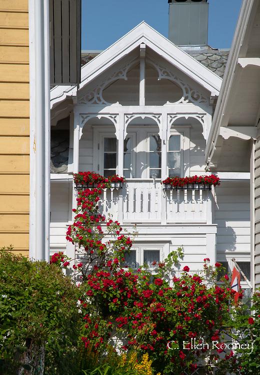 A traditonal wooden cottage covered with red roses in Solvorn, Lustra Fjord, Vestlandet, Norway