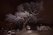 Nightshoot at Herøy Gard, Norway 31st December 2009 | Nattfotografering på Herøy Gard, Norge 31 desember 2009.