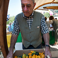 Sfida delle Zucche  Sale Marasino - Iseo  Club Maspiano