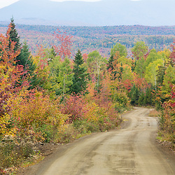 A logging road in Reddington Township, Maine provides a view of East Kennebago Mountain in fall.