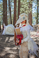 Trails and Vistas 2014 - Meadows to Mountains- a cultural journey