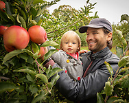 Apple picking at Alstede Farms in Chester, New Jersey.