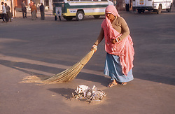 Woman using brush to sweep street in Jaipur; Rajasthan; India,