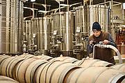 wine production at Long Shadows Vintners