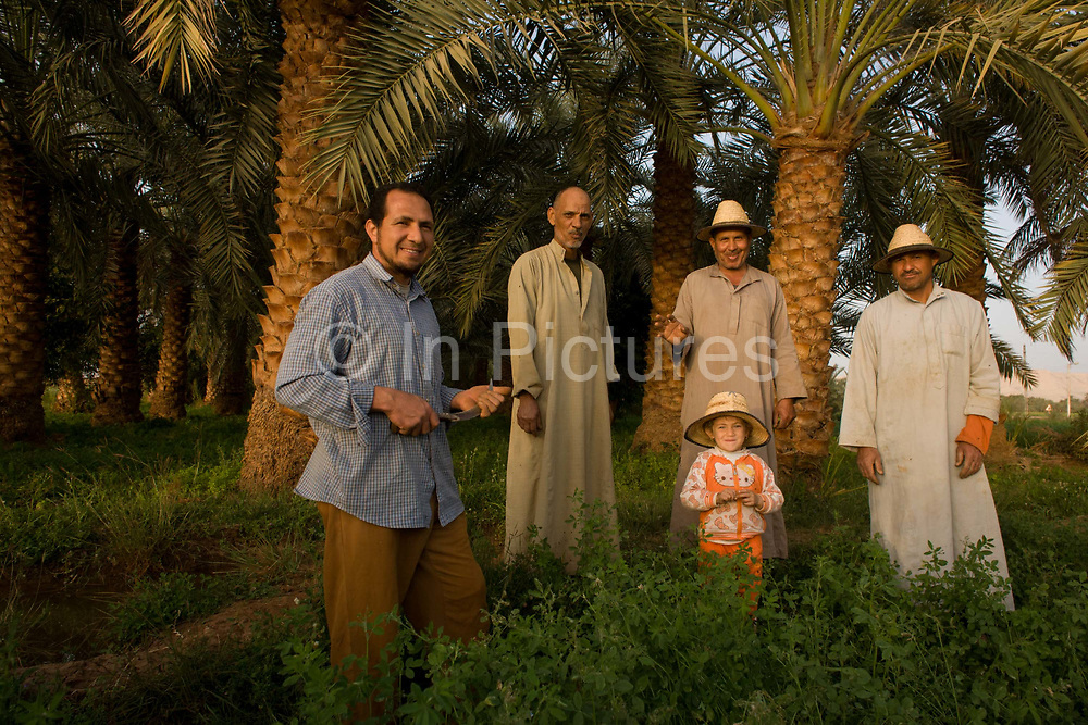 Portrait of a farming family standing in front of date palms in fertile fields where agriculture is important for survival, at Bedhal near Dahkla Oasis, Western Desert, Egypt where the availability of water determines the agricultural economic life in an oasis village. Dakhla Oasis consists of several communities, along a string of sub-oases. The main settlements are Mut (more fully Mut el-Kharab and anciently called Mothis), El-Masara, Al-Qasr, Qalamoun, together with several smaller villages. Some of the communities have identities that are separate from each other. Qalamoun has inhabitants that trace their origins to the Ottomans.
