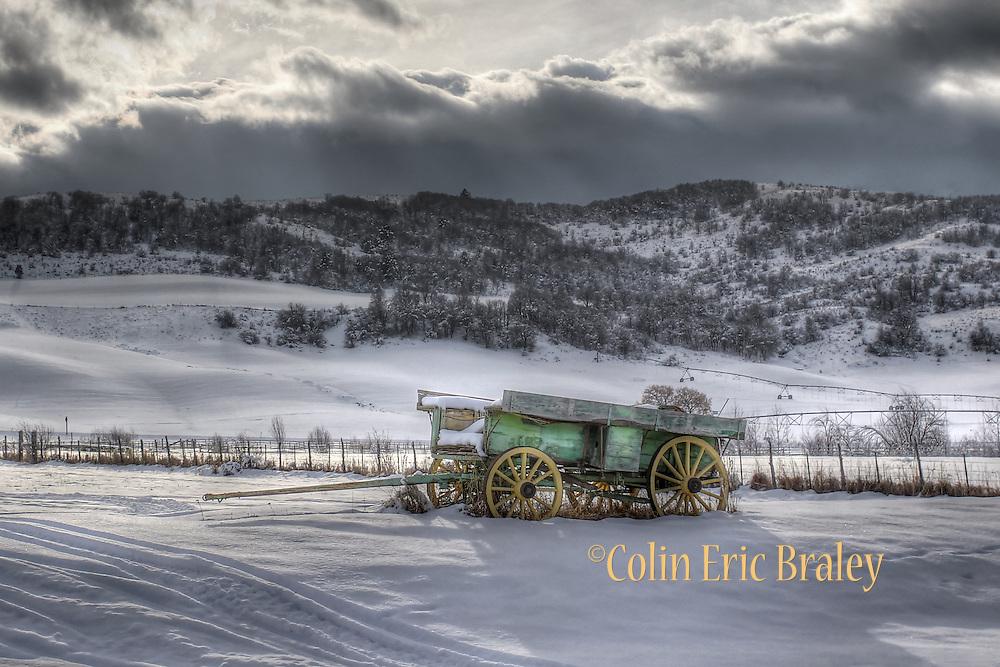 Colin E Braley (Wild West-Media)