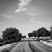 Landsvägen mot Hoburgen, Gotlands södra udde.<br /> PHOTO © Bernt Lindgren