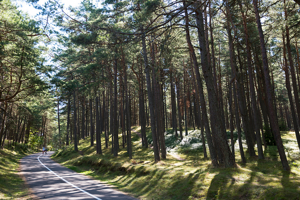 A woman walks her bike up a hill on a bike path in the Curonian Spit, Lithuania