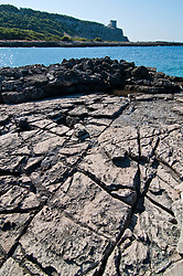"""Vista della scogliera di Porto selvaggio con la Torre dell'Alto sullo sfondo. La scogliera ha una particolare conformazione dovuta all'erosione del mare - Reportage fotografico di Alessandro Caniglia, Alessandro De Matteis e Dario Luceri - Il Parco Naturale Regionale di Porto Selvaggio è situato lungo la costa ionica e ricade nel comune di Nardò (Lecce). Definito come """"area di notevole interesse pubblico"""" già nel 1939, è stato effettivamente istituito come Parco nel 2004. I suoi limiti sono compresi tra la baia di Frascone (a nord) e la Torre dell'Alto (a sud). Ha una estensione complessiva di circa 1000 ettari.Porto Selvaggio è una delle zone tra le più incontaminate del litorale Ionico, con un paesaggio caratterizzato da una pineta di ca. 300 ettari e da una macchia mediterranea ricca di acacee e ginestre..Lungo la costa sono presenti molte cavità carsiche, con varie insenature, grotte sommerse.Per gli amanti della natura il paesaggio è estremamente suggestivo in ogni stagione: molto silenzioso e rilassante in autunno, inverno e primavera, ricco di colori e festoso in estate, con il canto delle cicale che accompagna i visitatori lungo i sentieri e di tratti di scogliera che portano fino alla spiaggia. Il mare limpido e azzurro, con un fondale ricco di flora e fauna marina, è spesso meta di numerosi subacquei."""