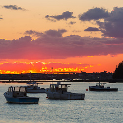 Lobster boats in the harbor at sunset. Beals, Maine.
