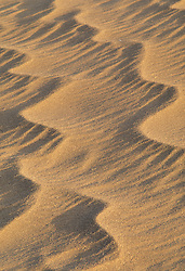 Africa, Morocco, Draa Valley, Tinfou (near Zagora), ripples in sand dunes sculpted by strong winds