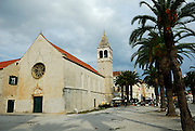 Church, Sveti Duje (Saint Dominic) Monastery and palm tree lined avenue. Trogir, Croatia