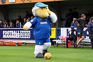 Haydon the Womble dribbling a football during the EFL Sky Bet League 1 match between AFC Wimbledon and Rochdale at the Cherry Red Records Stadium, Kingston, England on 5 October 2019.