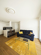 Modern open space with elegant kitchen and living room. Nobody inside