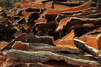Cork from Cork Oak (Quercus suber) Aggius, Sardinia, Italy